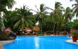 maldives basenu pływacka siklawa Fotografia Royalty Free