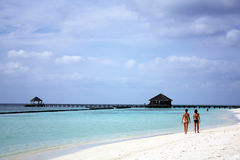 Maldives Beach. Picture of a white sand beach in the Maldives Royalty Free Stock Photography