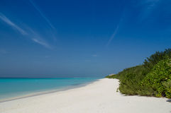 Maldives Beach. Awsome beautiful scene at the beach, blue sky with one white cloud, only white sand and the sea, the place for relaxing Royalty Free Stock Photo