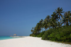Maldives beach. The arbor on Maldives beach Stock Image