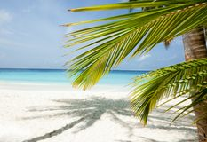Maldives beach background Stock Photo