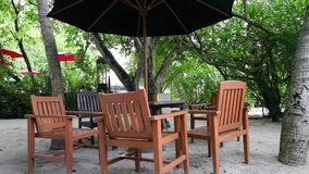 Maldives, the beach bar, furniture in the midst of plants stock video footage