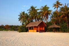 Maldives beach. Maldives beautiful beach in the sunset Royalty Free Stock Photos