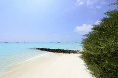 Maldives beach Royalty Free Stock Photos