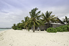 Maldives Beach  with a Hut in Palmtrees Stock Photos