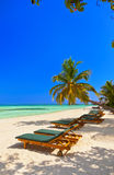 Maldives beach. Nature vacation background Stock Images