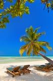 Maldives beach Royalty Free Stock Photos