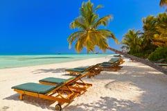 Maldives beach Stock Image
