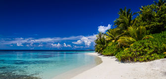 Maldives beach panorama, blue sky, coral reef Royalty Free Stock Image