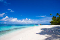 Maldives beach scene Stock Image
