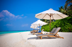 Maldives beach shezlongs 2 Royalty Free Stock Photos