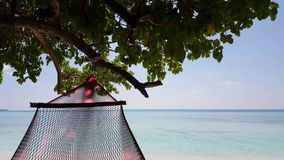 Maldives beautiful beach background white sandy tropical paradise island with blue sky sea water ocean 4k hammock stock video