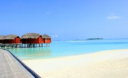 Maldives. The beautiful beach at Maldives in summer Stock Images