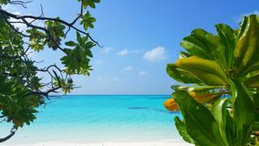 Maldives beautiful white sandy beach background with palm trees on sunny tropical paradise island with aqua blue Stock Photo