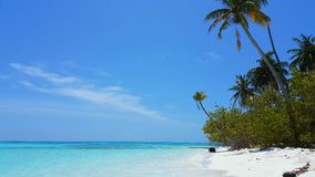 Maldives beautiful white sandy beach background with palm trees on sunny tropical paradise island with aqua blue Stock Photography