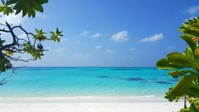 Maldives beautiful white sandy beach background with palm trees on sunny tropical paradise island with aqua blue Royalty Free Stock Photos