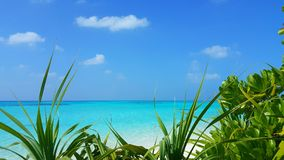 Maldives beautiful white sandy beach background with palm trees on sunny tropical paradise island with aqua blue Royalty Free Stock Images
