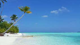 Maldives beautiful white sandy beach background with palm trees on sunny tropical paradise island with aqua blue Royalty Free Stock Image