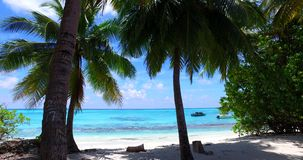 Maldives beautiful white sandy beach background with palm trees on sunny tropical paradise island with aqua. Blue sky sea water ocean 4k Stock Image