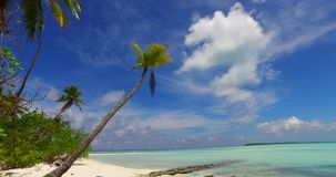 Maldives beautiful white sandy beach background with palm trees on sunny tropical paradise island with aqua blue. Sky sea water ocean 4k Royalty Free Stock Image