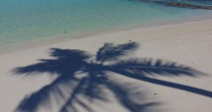 Maldives beautiful white sandy beach background with palm trees on sunny tropical paradise island with aqua blue stock video footage