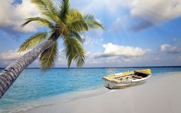 Maldives. The boat on the sandy beach and a palm tree over water.  Royalty Free Stock Photo
