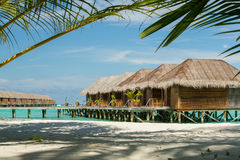 Maldives bungalow with palm tree as foreground element Stock Photo