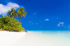 Maldives  day tropical Stock Photography