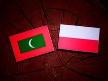 Maldives flag with Polish flag on a tree stump isolated. Maldives flag with Polish flag on a tree stump royalty free illustration
