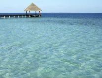 maldives hav royaltyfri bild