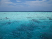 maldives hav s Royaltyfri Foto