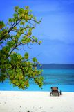 Maldives: Holiday feeling Royalty Free Stock Photography
