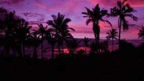 Maldives. Holidays in the Maldives. Dawn Royalty Free Stock Photo