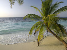 Maldives in the Indian Ocean Royalty Free Stock Photos