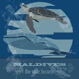 Maldives  infographics, statistical data, sights Stock Photography