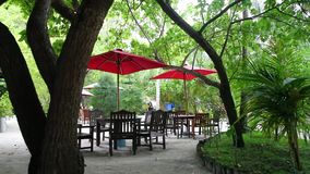 Maldives, inside view of the island, a little bar with furniture and parasol stock video