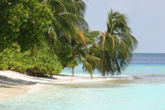 Maldives island Royalty Free Stock Photography