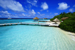 Free Maldives Island Royalty Free Stock Photo - 46491465