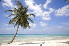 Maldives island Stock Image