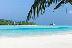Maldives island beach with palm tree and villa Stock Photography