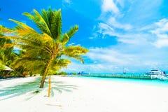 Maldives island Royalty Free Stock Photography