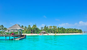 Maldives island with blue sea Royalty Free Stock Photography
