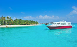 Maldives island with blue sea and blue sky Royalty Free Stock Photography