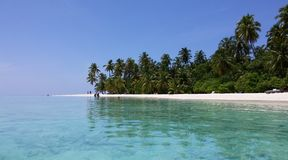 Maldives. Island on the ocean Royalty Free Stock Photos