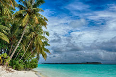 Maldives -Island in the Ocean, Beach and Рalm trees Royalty Free Stock Photos