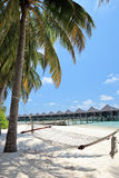 Maldives island, sandy beach, palm and hammock Royalty Free Stock Photo
