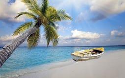 maldives Le bateau sur la plage sablonneuse et un palmier au-dessus de l'eau Photo libre de droits