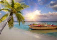maldives Les bateaux en bois lumineux dans la mer et le palmier s'est pliés au-dessus de l'eau Images stock