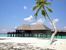 Maldives. Nice resort in Maldives India royalty free stock photo