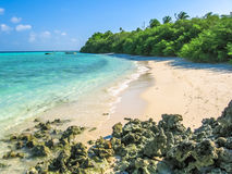 Maldives paradise lagoon. Maldives, Atoll, Indian Ocean. Spectacular bay with palm trees on the white sand beach. Turquoise water of the lagoon. Asdu in Male Stock Image